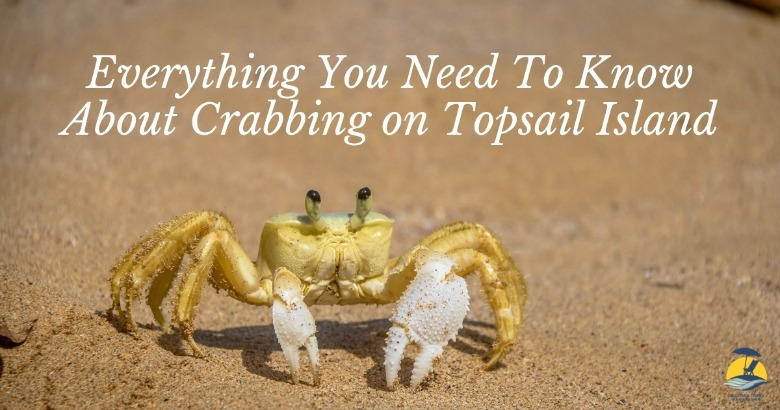 Everything You Need to Know About Crabbing on Topsail Island | Coastline Realty Vacations