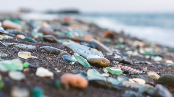 sea glass and smooth shells on the beach | Coastline Realty